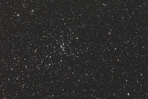 M48-201938x