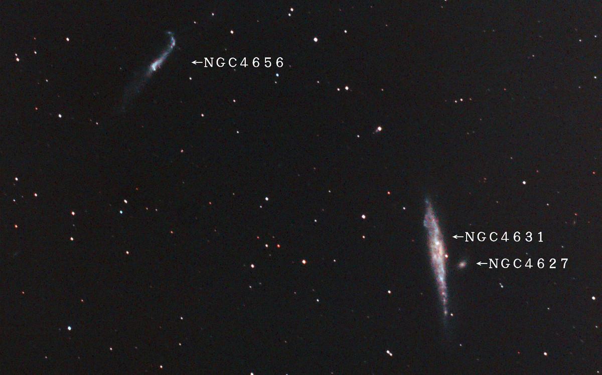 Ngc4631j