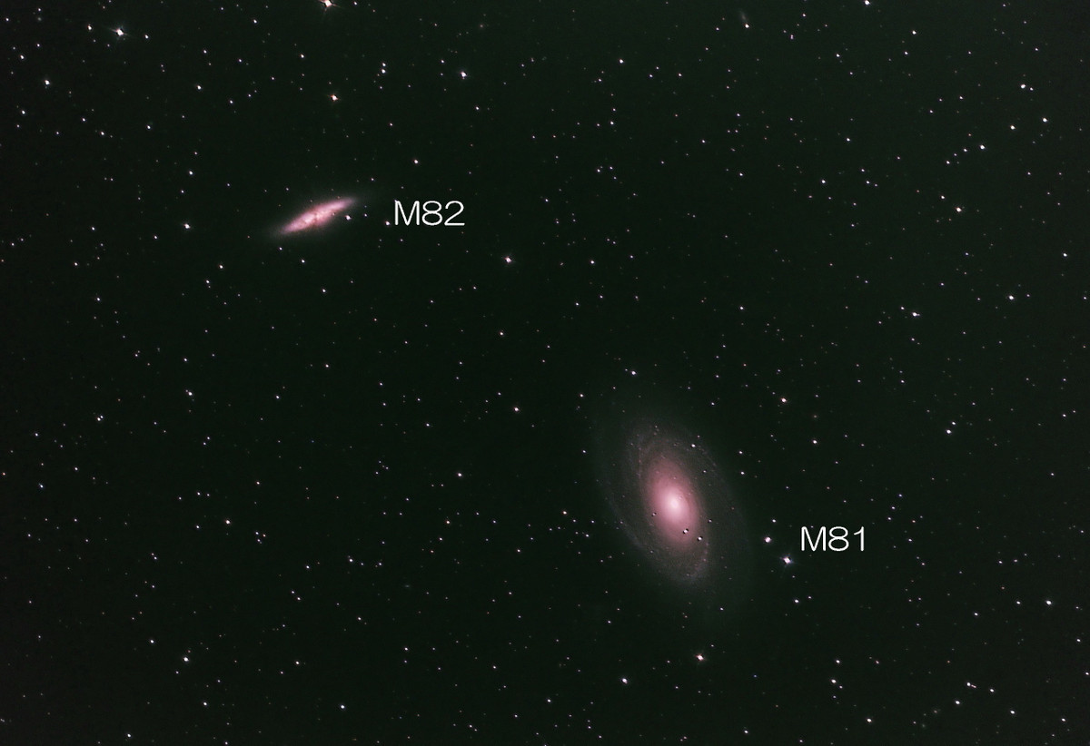 M81m821633in