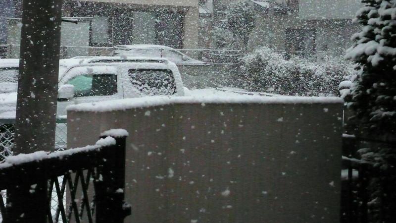 P1060342_snow_c_2
