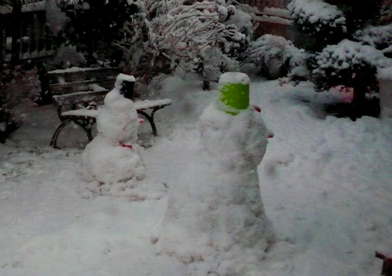 P1060345_snow_e