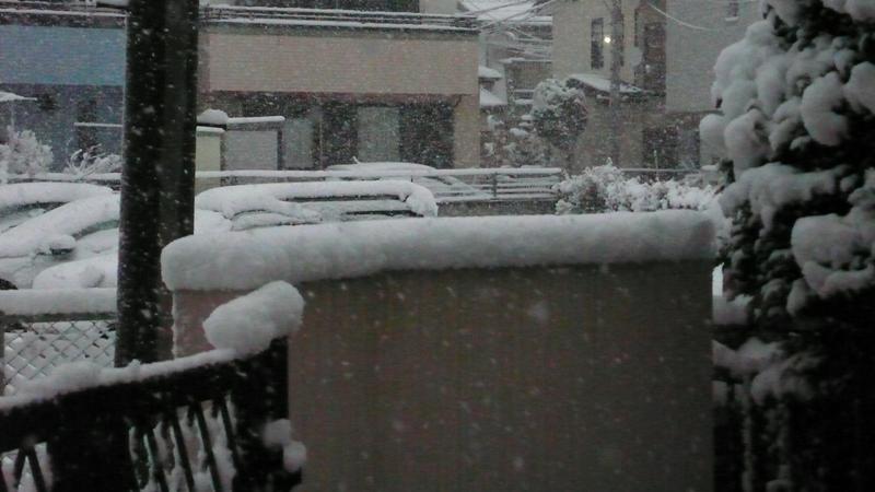 P1060348_snow_d